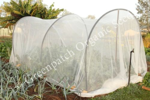 Vege Net Vegetable Netting 6m Wide cut per Metre