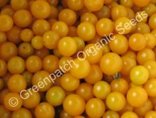 Tomato - Yellow Cherry Currant