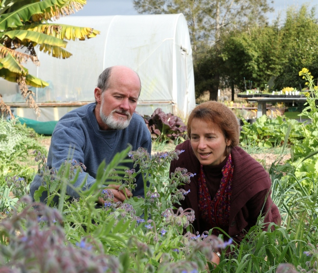 Horticulturalists Neville and Sophia Donovan